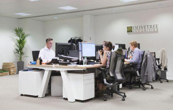 Olivetree Securities Case Study Image
